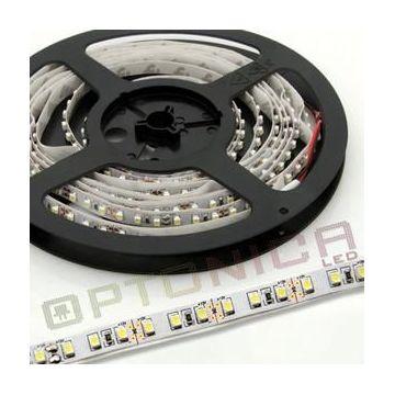 LED STRIP 3528 60 SMD/m Vert NON-Etanche - 10m/Rouleau - Blanc BASE