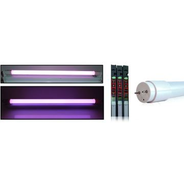 tube LED T8 9W rose