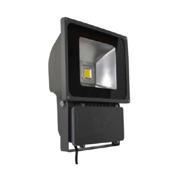 PROJECT LED VISION-EL 230 V 70 WATT 4000°K GRIS IP 65