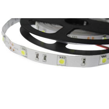 BANDE LED BLANC 4000°K 5 M 30 LEDS ET 7,2 W / M IP20