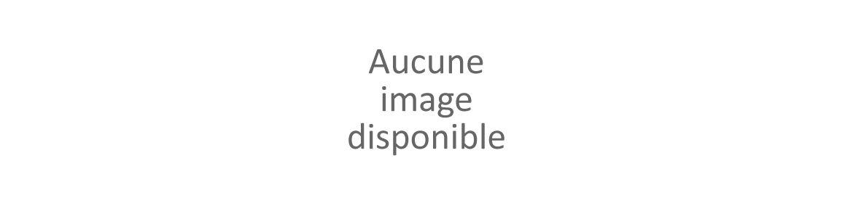 Domotique CAME